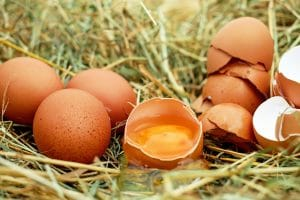 je haar wassen met eieren