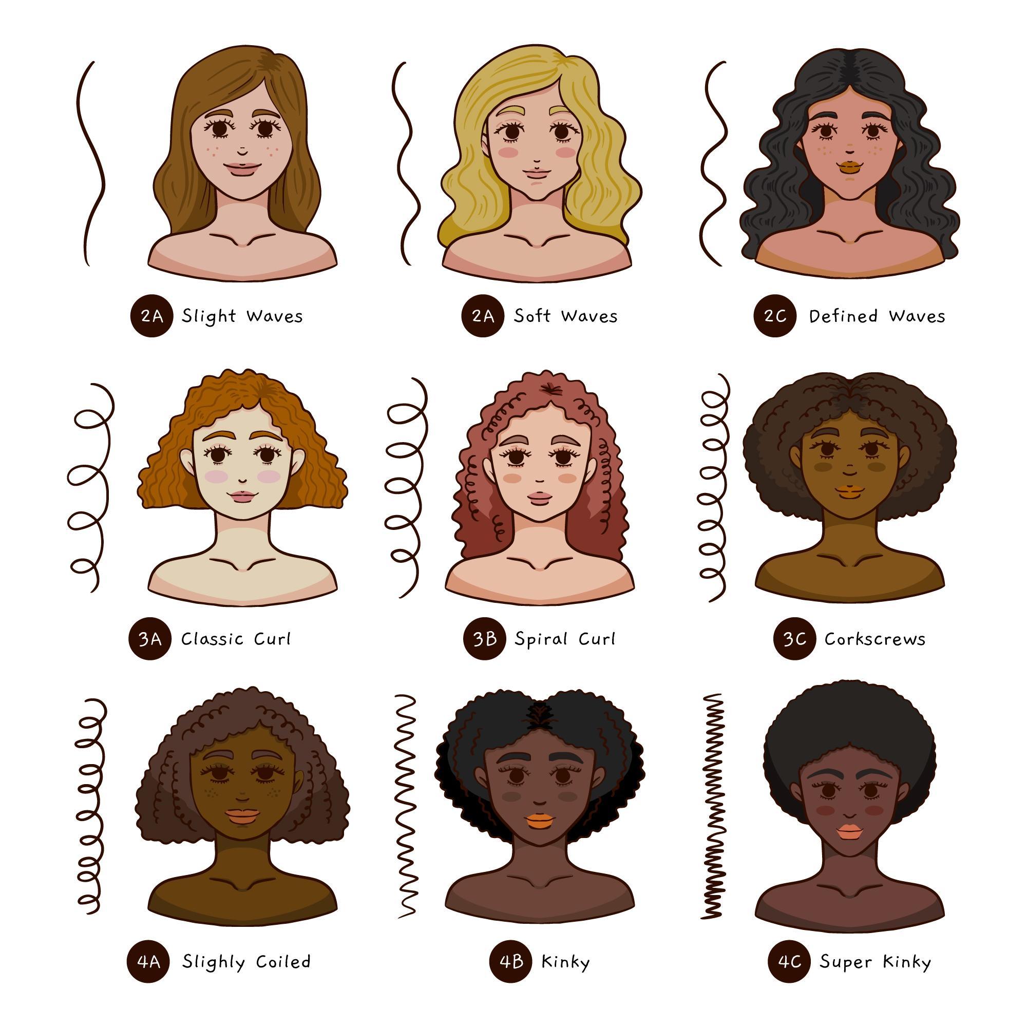 Krul haartypes